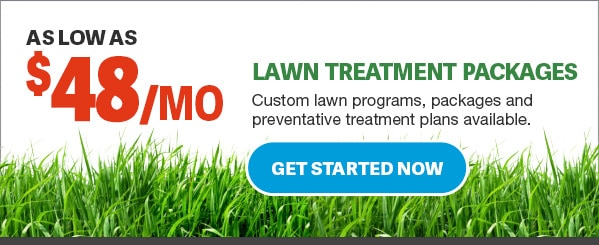 lawn-treatment-services-clearwater-florida